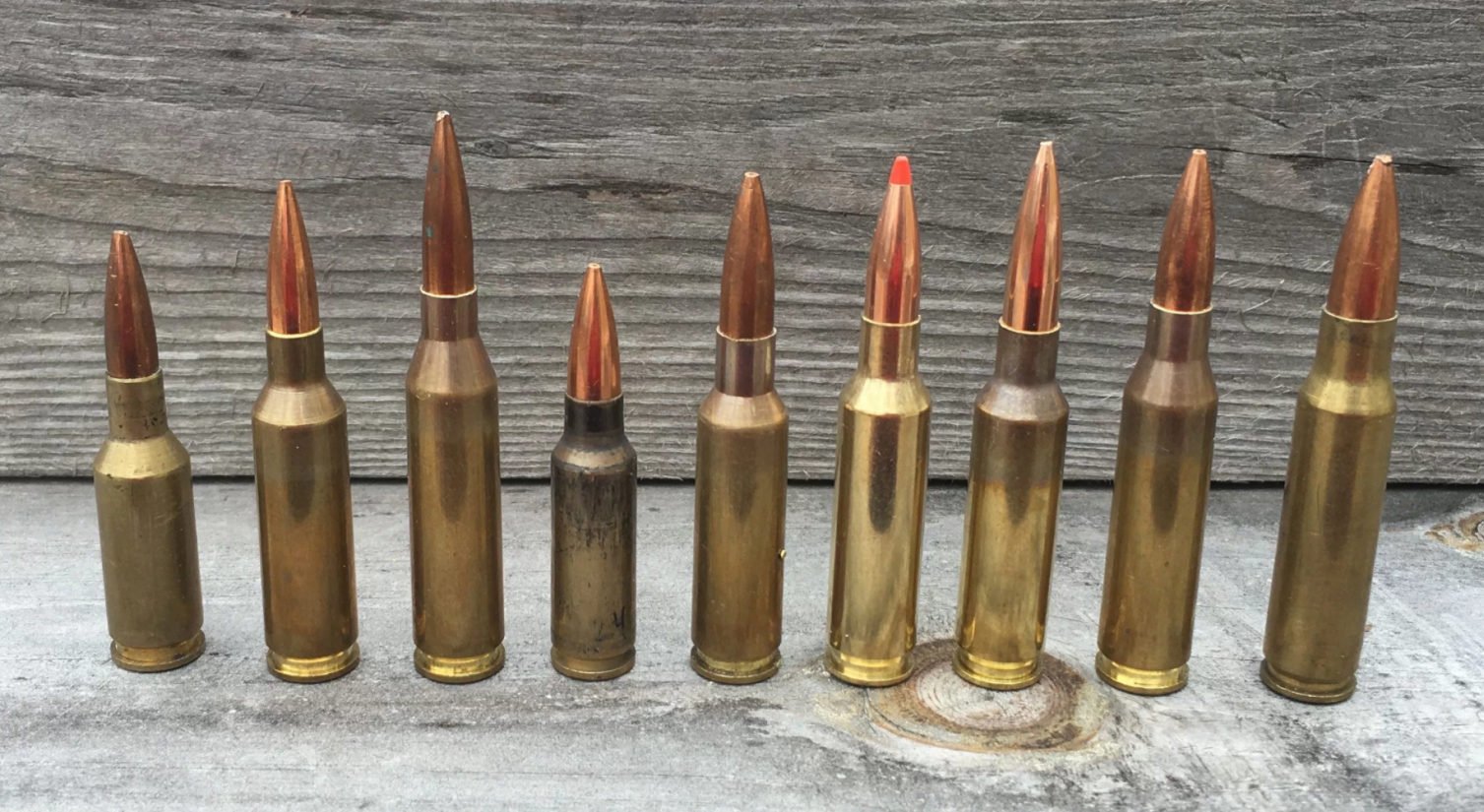 The Best Rifle Rounds for Hunting Whitetail Deer